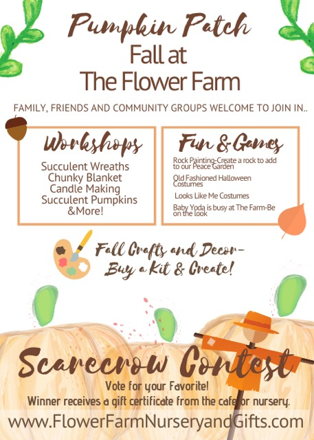 Pumpkin Patch and Autumn Events October 2020